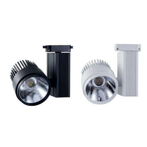 LED RAY SPOT 30W 2